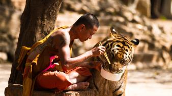 Animals eat human monk nature Wallpaper