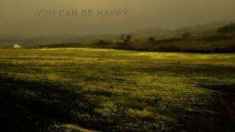 California adult swim you can be happy wallpaper