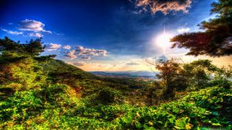 Landscapes nature forests distance valleys hdr photography wallpaper