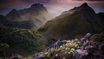 Mountains clouds flowers fields thailand wallpaper