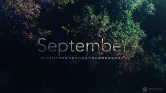Multicolor calendar september Wallpaper