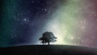 Outer space trees night skies wallpaper