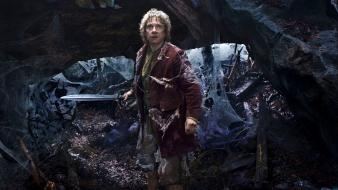 Sting the hobbit martin freeman bilbo baggins wallpaper