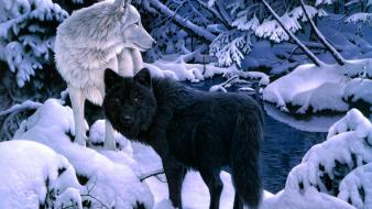 Animals black nature paintings snow wallpaper