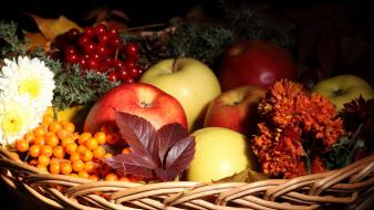Flowers fruits baskets apples cranberries wallpaper