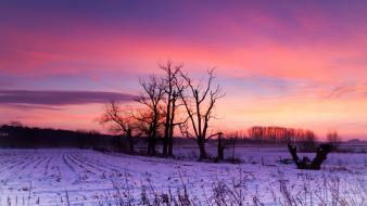 Sunrise clouds winter snow sun morning skies wallpaper