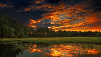 Sunset landscapes nature forests scenic wallpaper
