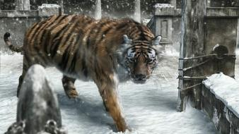 Animals concept art tigers wallpaper