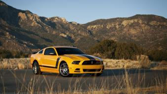 Cars ford muscle mustang wallpaper