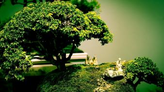 Composition bonsai tree digital art shape wallpaper