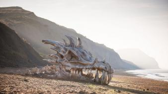 Game of thrones beaches dragons wallpaper
