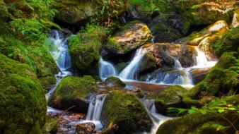 Green water landscapes nature trees rocks waterfalls creek Wallpaper