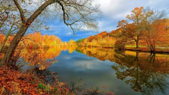 Lakes landscapes nature trees wallpaper