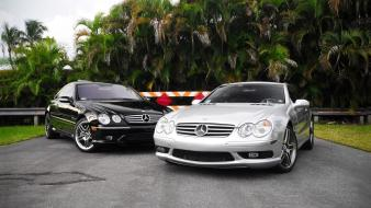 Palm mercedes-benz luxury mercedes benz wallpaper
