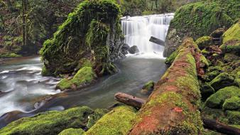 Rocks usa moss oregon logs waterfalls rivers Wallpaper