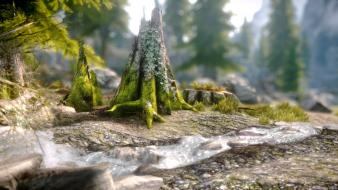 Scrolls v: skyrim grass nature video games wallpaper