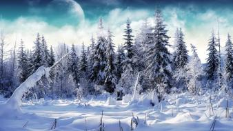 Winter snow trees white artistic moon snowy wallpaper
