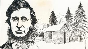 Writers drawings henry david thoreau walden wallpaper