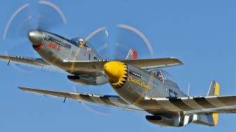 Aircraft aviation p-51 mustang wallpaper