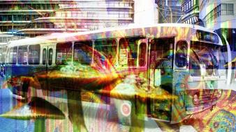 Amsterdam bus drugs mushrooms wallpaper