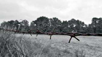 Barbed wire black and white colored countryside landscapes wallpaper