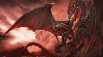 Dragons fantasy art Wallpaper