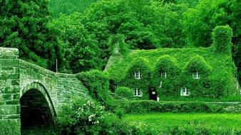 Green trees houses bridges man made wallpaper