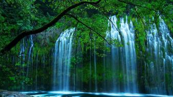 Landscapes nature trees forests waterfalls wallpaper