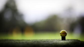 Sports golf wallpaper