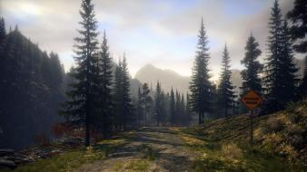 Video games trees alan wake wallpaper