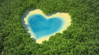 Water forests hearts lakes Wallpaper