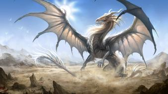 Birds flags white dragon wallpaper