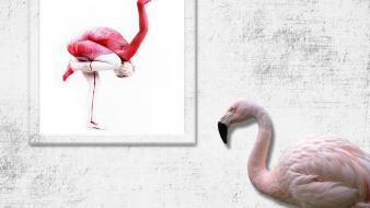 Bodypainting flamingos wallpaper