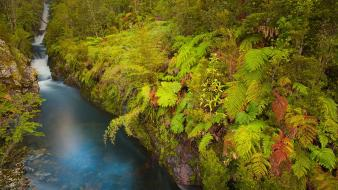 Chile pumalin national park x region blue creek Wallpaper