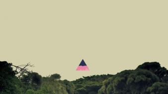 Forests hipster triangles wallpaper
