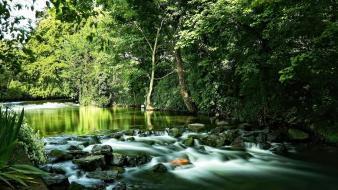 Green water landscapes nature trees plants sign wallpaper