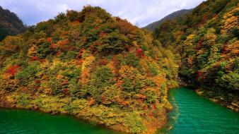 Japan nature trees lakes mountaineers akita sea wallpaper