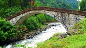 Landscapes nature forests bridges turkey rize wallpaper
