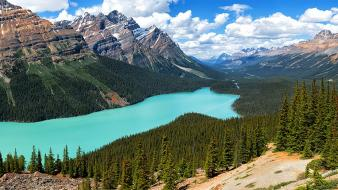 National park canada peyto lake rocky mountains wallpaper