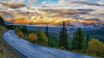 Nature forests roads skies yellowstone national park wallpaper