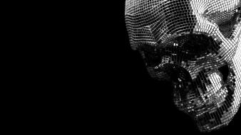Skulls boys noize Wallpaper