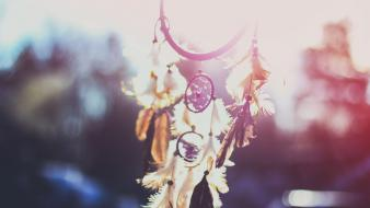 Sun dreamcatcher vintage cameras wallpaper