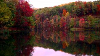 Autumn colors forests green lakes wallpaper