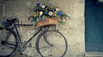 Bicycles photograph wallpaper