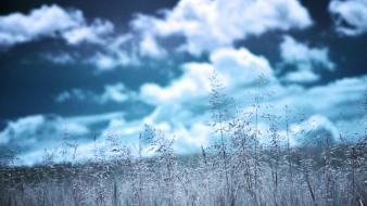 Blue clouds grass infrared photography wallpaper