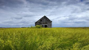 Grass houses fields meadows barn abandoned skyscapes wallpaper