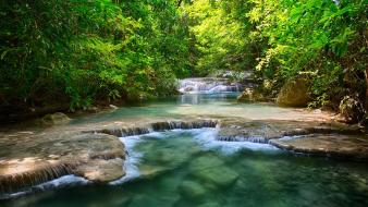 Green water nature trees asia thailand rivers forest Wallpaper