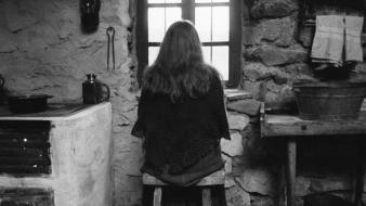 Indoors kitchen grayscale windows the turin horse wallpaper