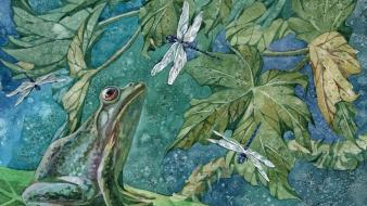 Leaves frogs artwork dragonflies hunting watercolor amphibians wallpaper