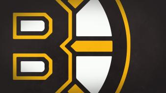 Minimalistic sports team hockey nhl logos simple Wallpaper